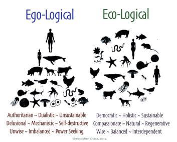 egologic-ecologic