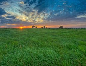 A Summer Sunrise over on the Nature Conservancy's Tallgrass Prairie Preserve near Pawhuska,Oklahoma<br />